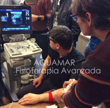 elastografía fisioterapia